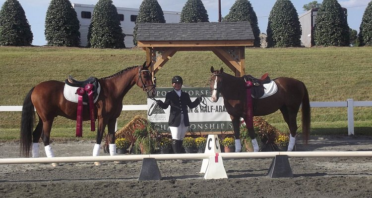Carla Scarmazzi Named Custom Saddlery Most Valuable Rider at AHA Sport Horse Nationals