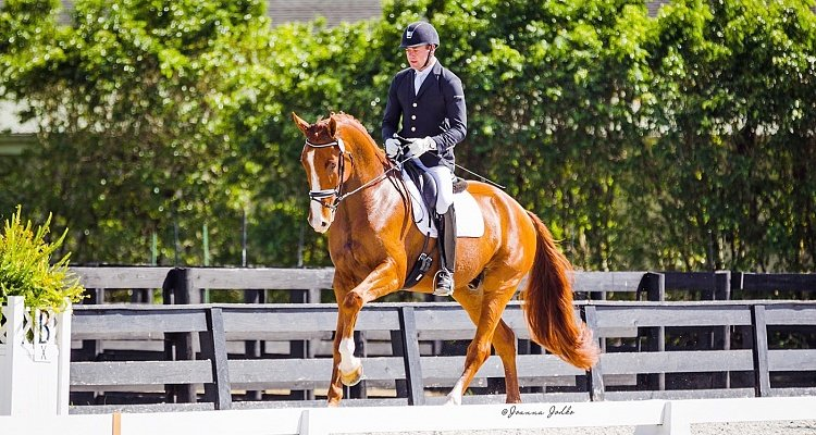 Endel Ots Takes Agastrophos II to New Levels at the 2018 Wellington Classic Dressage Autumn Classic
