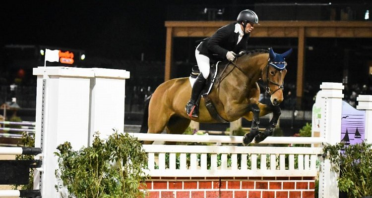 2019 Young Horse Show Finals presented by Spy Coast Farm Sees Record Entries at TIEC