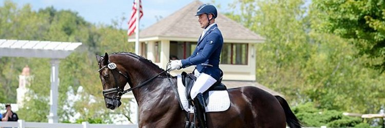 Custom Saddlery MVRs Excel at the U.S. Dressage Festival of Champions and Markel/USEF Young and Developing Horse Dressage National Championships